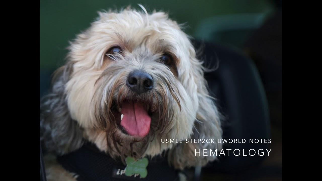 Hematology: USMLE Step 2CK UWORLD Audio Notes