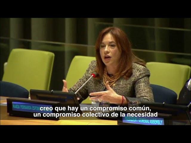 ONU Consejo de Seguridad