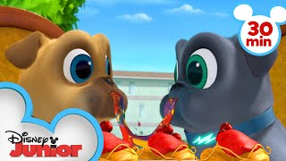 Download Bingo and Rolly Travel Across Europe! | 30 Minute Compilation | Puppy Dog Pals| Disney Junior