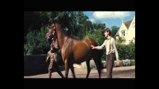 Боевой конь (Europe - The final countdown).avi
