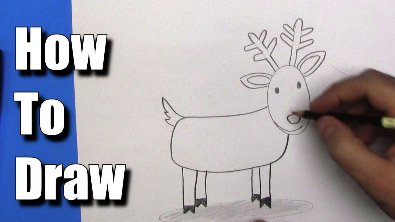How To Draw: Easy Reindeer- Step By Step