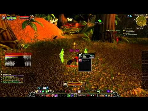 wow-speed-leveling-1-110-in-just-2days!!.-xp-boost-wow-quick-leveling-guide.