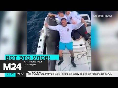 Восьмилетний мальчик поймал акулу - Москва 24
