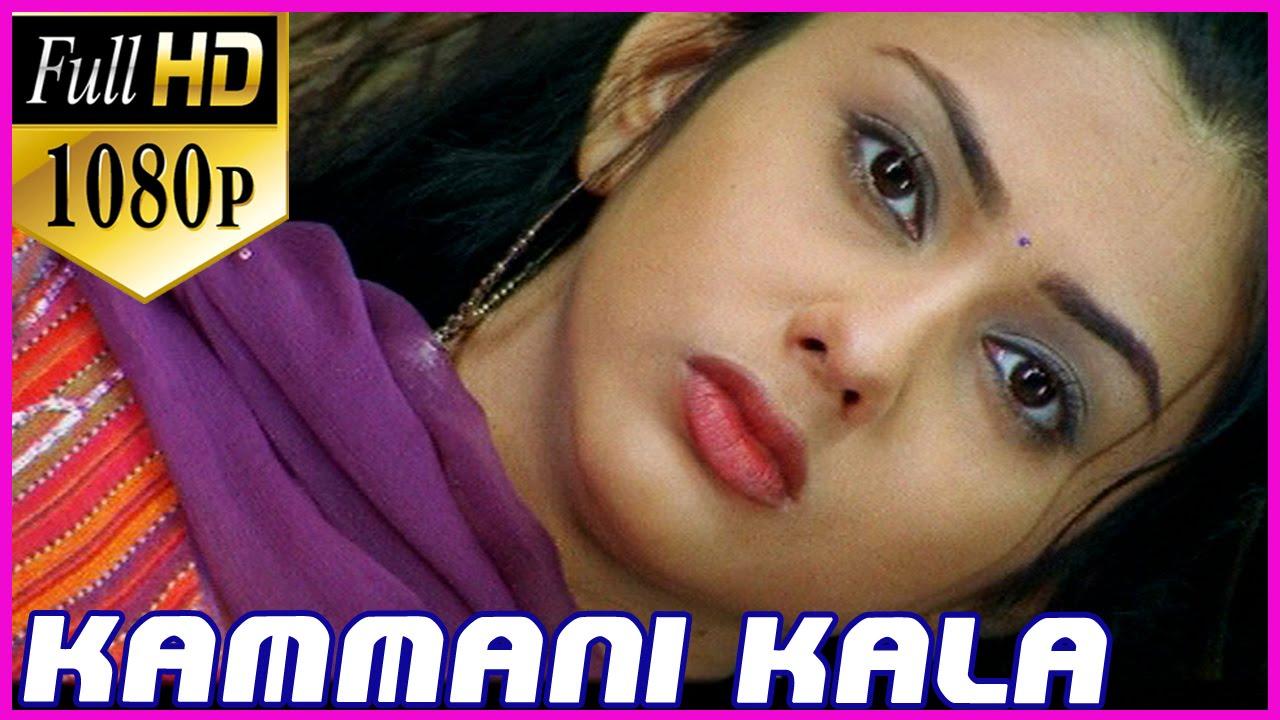Tamil p HD Videos Songs Download TamilRockers HD Videos Songs Download