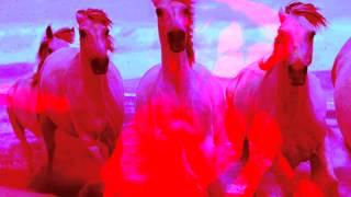 "Marina Celeste -  "" Je Suis Pas Ton Cheval ""  (demo 2015 nouvel album)"