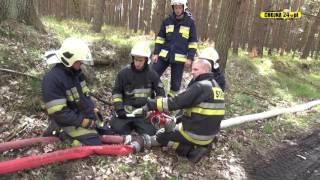 Pożar w lesie, wspólne ćwiczenia straży pożarnej i służby leśnej [chojna24.pl]