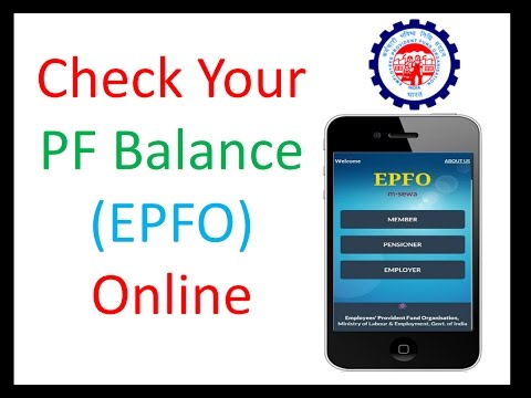 How to Check PF Balance Online (EPFO) Account Details in Hindi | Check EPF  balance in Mobile