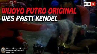 Bantengan Wijoyo Putro Original Rasho1260 Live Nyadran Sonoageng