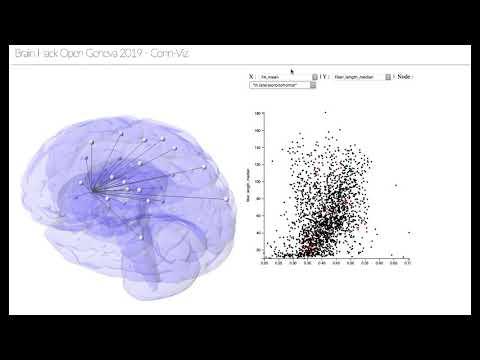 Brain Hack Open Geneva 2019 - Visualizing brain connectomics using D3.js