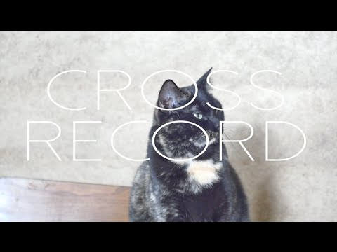 """Cross Record- """"Holy Well"""" - NPR Tiny Desk Contest entry"""