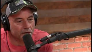 Joe Rogan - Jiu Jitsu is the Truest Martial Art