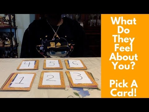 What Do They Feel About You? Pick A Card Reading