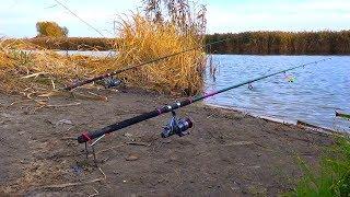 Рыбалка на карася поздней осенью в ноябре! УБИЙЦА КАРАСЯ против ФЛЭТ ФИДЕР!