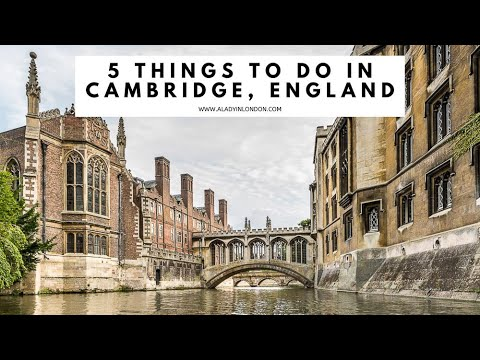 5 THINGS TO DO IN CAMBRIDGE, ENGLAND | Cambridge University | Cambridge Colleges | Punting | Shops