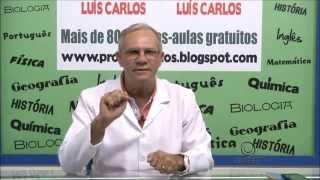 PORTUGUES   Interpretação de Texto   coesão sequencial   Prof Vanduí Guedes