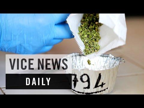 VICE News Daily: Italy's Army Grows Medical Marijuana
