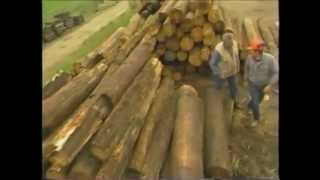 Recycled Lumber Using Old Telephone Poles