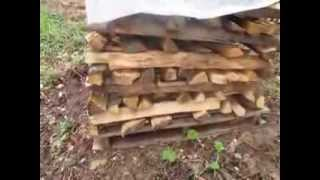 How To Convert 22 Tons Of Oak Trees Into Firewood - Ideas For Stacking