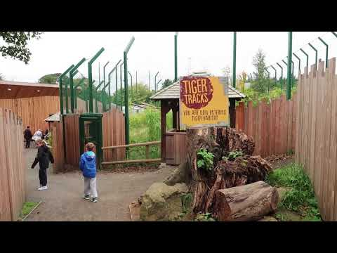 Edinburgh Zoo 2017