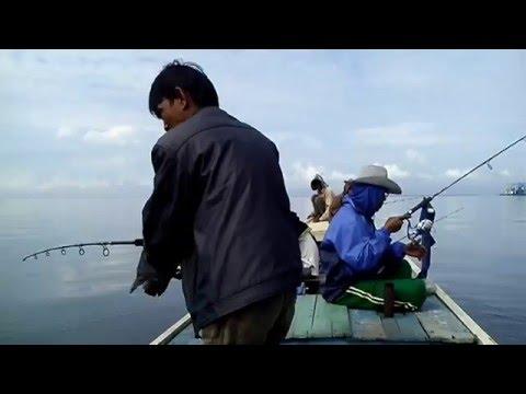 Laut Flat - Ikan Kakap Merah Di Laut Badak - Memancing ...Badak Laut
