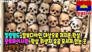 【리빙tv】손바닥 세계여행, 캄보디아-킬링필드, 왓트마…
