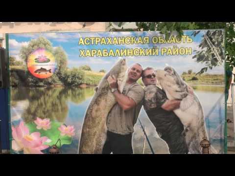 Пресноводные рыбы Spearfishingsu
