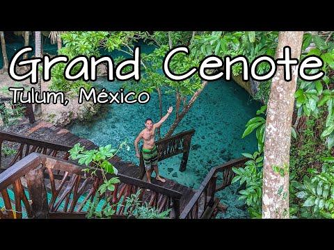 Grand Cenote Tulum ✅ ¿Cuánto cuesta? ¿Cómo llegar? 🐢 Cenote en Tulum con tortugas! #rivieramaya