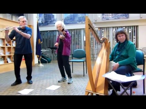 """Celtic Music - """"Top of Maol / Ballydesmond"""" !"""
