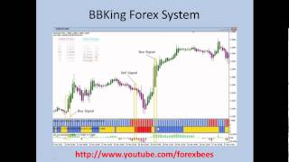 BBKing Forex Trading System