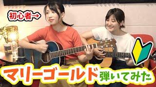 ギター初心者が30分でマリーゴールド弾いてみた!【なるのギター教室】 いちなるTV