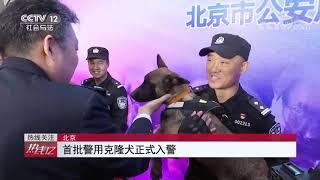 《热线12》 20191125| CCTV社会与法