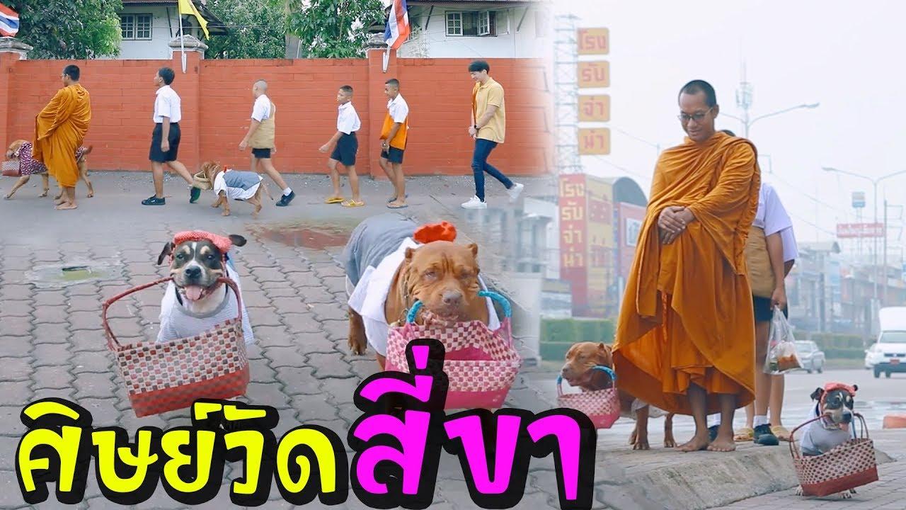 """""""ศิษย์วัดสี่ขา"""" หลวงพี่ไปไหน ผมไปด้วย! l ไทยทึ่ง WOW! THAILAND"""