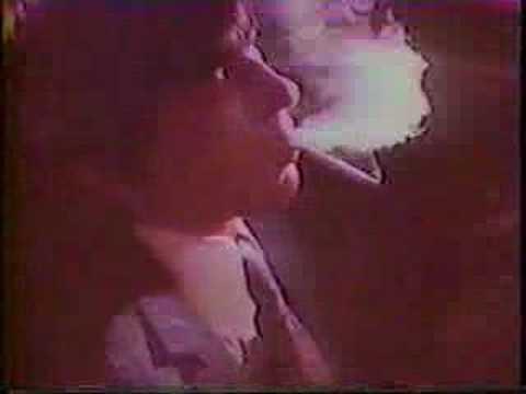 """1970's """"dynamic bluebird 1600"""" ad"""