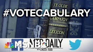 Ye Olde Campaign Lexicon: Bellwethers, Cash On Hand And Grass Roots | MTP Daily | MSNBC