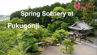 Spring Scenery at Fukugon Temple