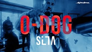 SILLA - O-DOG [ OFFICIAL 4K MUSIC VIDEO ]