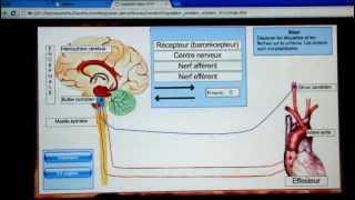Vidéo de présentation de mon logiciel de simulation