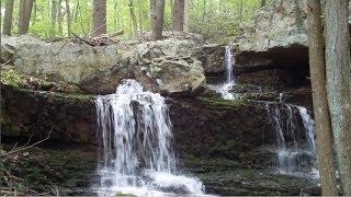 Coppermines - Rattlesnake Swamp - Njhiking.com