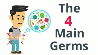 Why do we get sick? |The Four Main Germs|