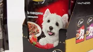 Влажный корм Cesar для собак всех пород из говядины с овощами