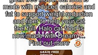 Halo Grain Free Natural Dry Cat Food, Indoor Healthy Weight Chicken & Chicken Liver Recipe, 6-Pound