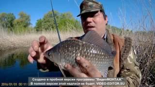 Рыбалка 1 е Мая 2017 караси и черепаха