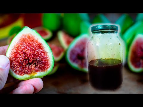How to Make Fig Syrup To Treat Cough, Sore Throat and Constipation