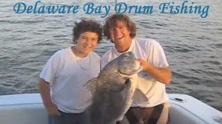 Black Drum Fishing: Delaware Bay Fishing Charter