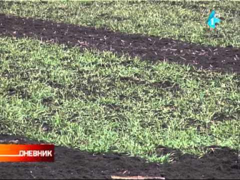 Potpisan predugovor: Emirati ulažu 200 miliona evra u agrar