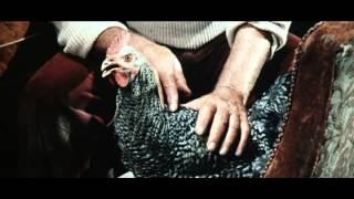 Bud Spencer Terence Hill Akik Csizmaban Halnak Meg XviD Hun Coopter