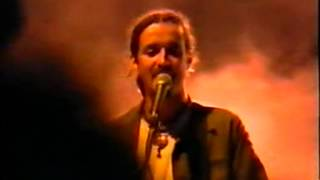 Смотреть клип Daniele Silvestri - Cohiba Live Melpignano Estate 1997
