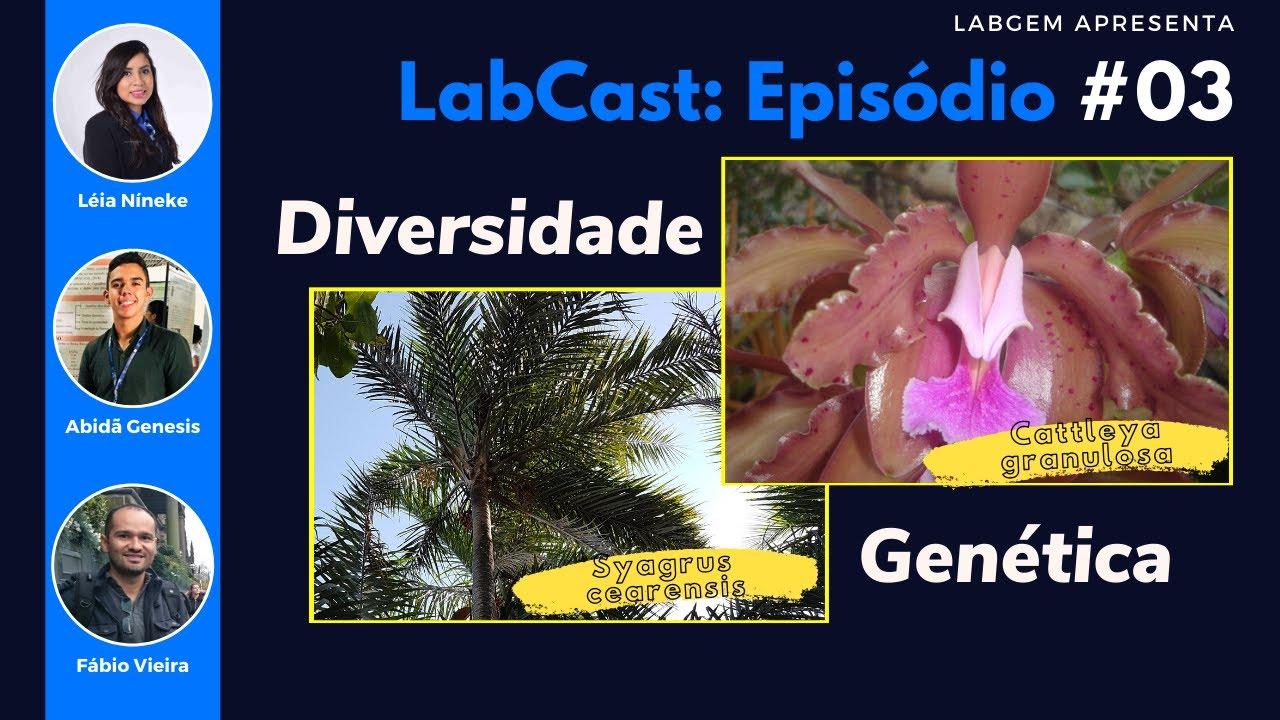 Diversidade genética da Cattleya granulosa e do Catolé – LabCast: Episódio #03