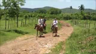 Прогулка на лошадях в горах Тринидада. Куба. Туристическая Компания Кубы CUBAGood.com(Видео о Кубе, путешествиях, Карибском море и Атлантическом Океане, Гаване, Варадеро. Video about Cuba, travel, Caribbean..., 2014-07-22T04:58:54.000Z)