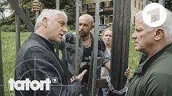 "Trailer: ""Freies Land"" | Tatort"